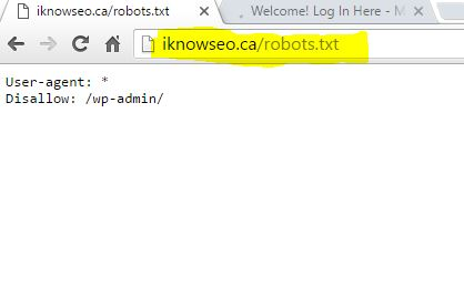 SEO tools for small business -iknowseo.ca robots