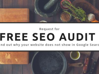 Get Free Website Audit to Know Why Your Website Desnt Show in Google